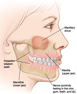 TMJ and Facial Pain Evaluation